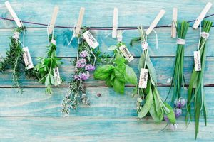 Herbal Cleanse – Natural herbs for body detox
